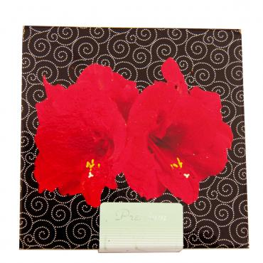 amaryllis red lion in geschenkdose artist hippeastrum 1 zwiebel exotenherz. Black Bedroom Furniture Sets. Home Design Ideas