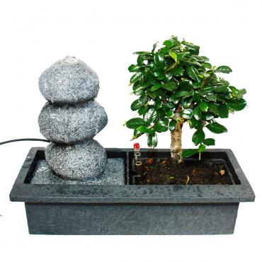 "Indoor-Bonsai mit Zimmer-Brunnen ""Balance"" – 3 Kieselsteine – Easy Care System"