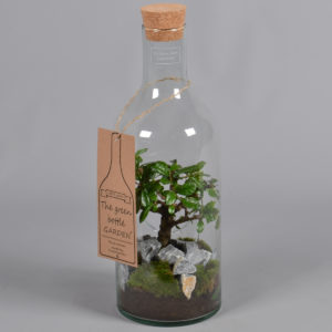 The green Bottle Garten – Glasflasche mit Kork und Bonsai